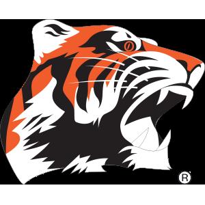 Chagrin Falls Twinsburg Tigers Hockey - NEO Sports Insiders  |Chagrin Falls Tigers